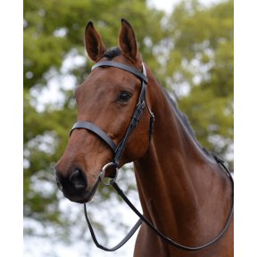 Kincade Hunt Cavesson Bridle