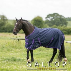 Gallop Trojan Lite Weight Turnout
