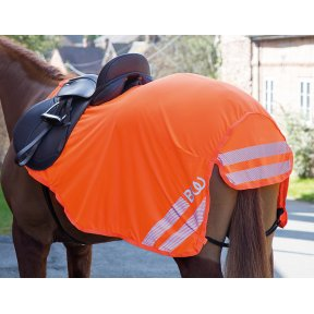 Bridleway Lightweight High Visibility Exercise Sheet