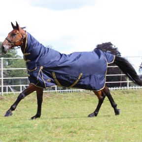 Gallop Trojan 100g Combo Turnout Rug